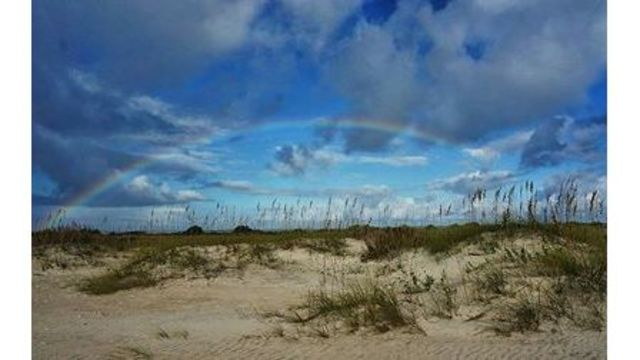 Charity Woolverton -- Cape Lookout (2)_509045