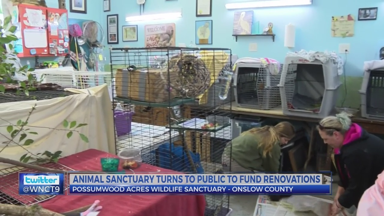 possumwood acres wildlife sanctuary looking for sponsors for renovations