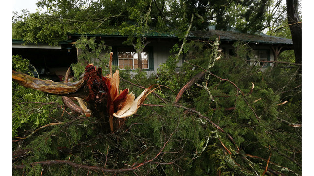 Girl dies when tree falls on home in Florida as storms hit South